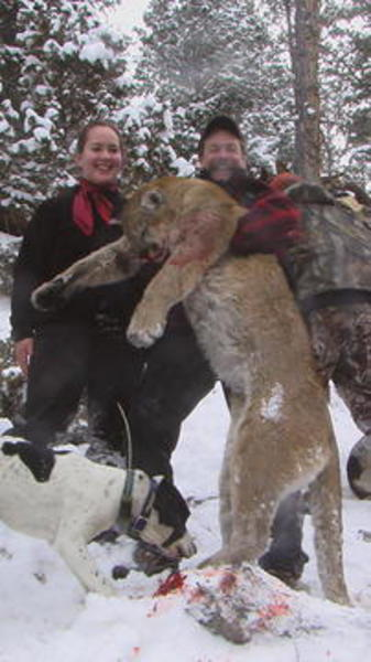 1-Utah Mountain Lion